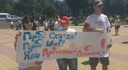 Более 500 человек вышли на митинг против сноса коттеджей в Геленджике